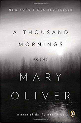 Cover of book A Thousand Mornings