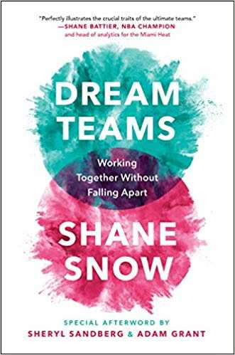 Cover of book Dream Teams: Working Together Without Falling Apart
